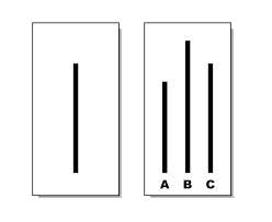 02.asch_lines_248_203